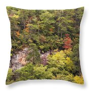 Fall Color In Little River Canyon Throw Pillow