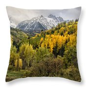 Fall Color In The Rockies Near Ouray Dsc07913 Throw Pillow