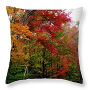Fall Color Palette Throw Pillow