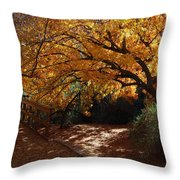 Fall Color Path Throw Pillow