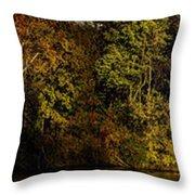 Fall Color Trees V7 Pano Throw Pillow