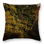 Fall Color Trees V8 Pano Throw Pillow