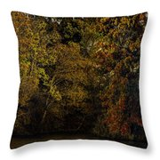 Fall Color Trees V9 Pano Throw Pillow