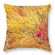 Fall Colored Horsetail And Fireweed  Throw Pillow