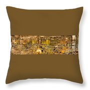 Fall Colored Pond Throw Pillow