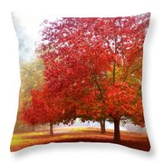 Fall Colored Trees Throw Pillow
