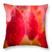 Fall Colors 0666 Throw Pillow