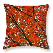Fall Colors 2014-10 Throw Pillow