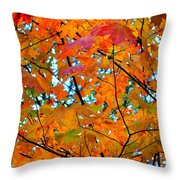 Fall Colors 2014-5 Throw Pillow