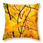 Fall Colors 2014-7 Throw Pillow