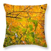 Fall Colors 2014-8 Throw Pillow