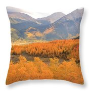 Fall Colors 3 Throw Pillow