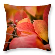 Fall Colors 6675 Throw Pillow