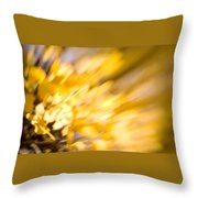 Fall Colors 6730 Throw Pillow
