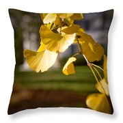 Fall Colors 6737 Throw Pillow