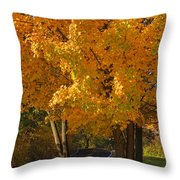 Fall Colors Throw Pillow by Adam Romanowicz