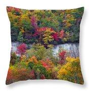 Fall Colors Along Tanasee Road Throw Pillow