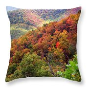 Fall Colors Along The Blueridge Throw Pillow
