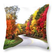 Fall Colors Along The Blueridge Parkway Throw Pillow