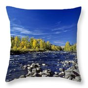Fall Colors Along The Naches River Throw Pillow