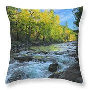 Fall Colors And The Little Salmon River Throw Pillow