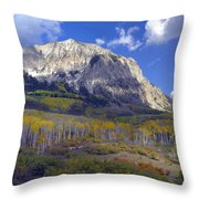 Fall Colors At Gunnison National Forest Throw Pillow