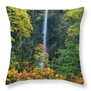 Fall Colors Frame Multnomah Falls Columbia River Gorge Oregon Throw Pillow