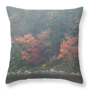 Fall Colors In Acadia National Park Maine Img 6483 Throw Pillow