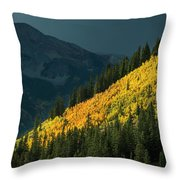 Fall Colors In Aspen Colorado Throw Pillow