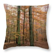 Fall Colors In Catoctin Mt. Park Throw Pillow