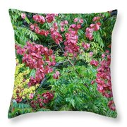 Fall Colors In Florida Throw Pillow
