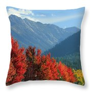 Fall Colors In Joseph Or Throw Pillow