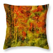 Fall Colors In Ohio Throw Pillow