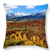 Fall Colors In Ridgway Colorado Throw Pillow