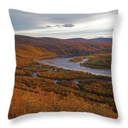 Fall Colors In The Arctic Throw Pillow