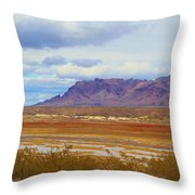 Fall Colors In The Lake Bed Throw Pillow