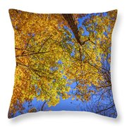 Fall Colors In The Sky  Throw Pillow