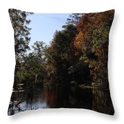 Fall Colors In The Swamp Throw Pillow