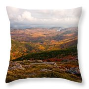 Fall Colors Of Acadia 6656 Throw Pillow
