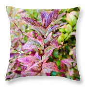 Fall Colors On A Foggy Day 2 Throw Pillow