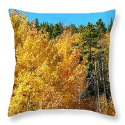 Fall Colors On The Colorado Aspen Trees Throw Pillow