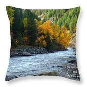 Fall Colors On The River Throw Pillow