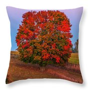 Fall Colors Over A Big Tree In Warmia In Poland During Twilight Hour Throw Pillow