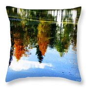 Fall Colors Throw Pillow by Pauli Hyvonen