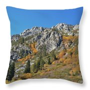 Fall Colors S Lake Tahoe California Throw Pillow