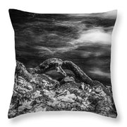 Fall Colors Stream Great Smoky Mountains Painted Bw Throw Pillow