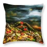 Fall Colors Stream Great Smoky Mountains Painted  Throw Pillow