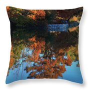 Fall Colors Water Reflection Throw Pillow by Robert D  Brozek