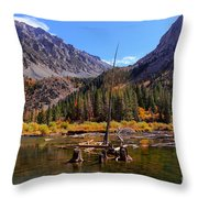 Fall Colours Reflection Throw Pillow