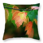 Fall Comes Throw Pillow